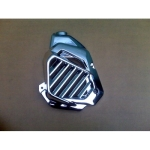 COVER RADIATOR VARIO 125 CHROM-0856.4355.2499